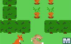 Hare's Harvest