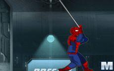Ultimate Spiderman Zodiac