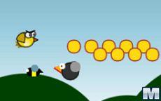 Uccelli Temerari