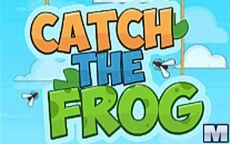 Acchiappa la rana