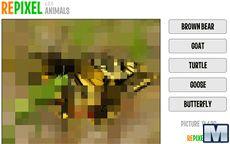 Repixel Animals