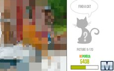 Repixel: Find a Cat
