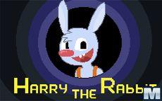 Harry the Rabbit