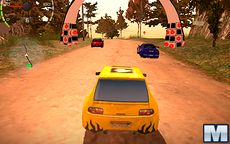 Dirt Rally Driver