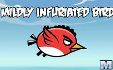 Mildly Infuriated Bird 2