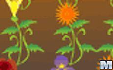 Fiori Uguali